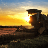Image for Farm Credit Canada Launches $100 Million Fund for Agribusiness Companies