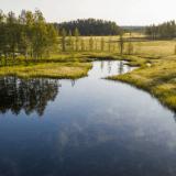 Image for New Travel Restrictions Affecting Northwest Saskatchewan