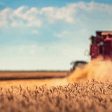 Image for Agriculture and Food a Key Economic Pillar in Canada's Budget 2021