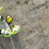 Image for Arbitrator Upholds Rapid COVID-19 Testing Program on Construction Sites