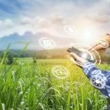 Image for Conexus Venture Capital Launches Agtech-Focused Venture Capital Fund